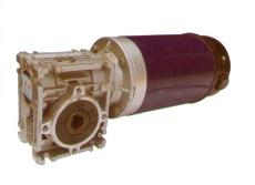 Worm gear reducer